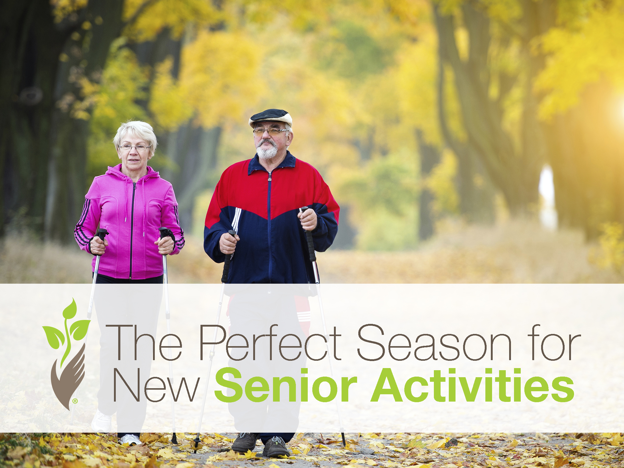 Fall: The Perfect Season for New Senior Activities