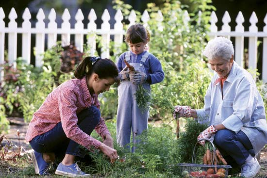 Gardening: Fun for Seniors