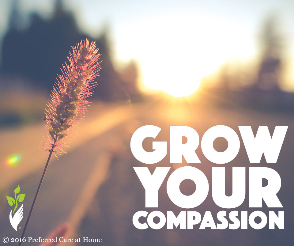 Grow Your Compassion